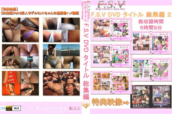 No.02 F.S.V DVD タイトル 総集編 2